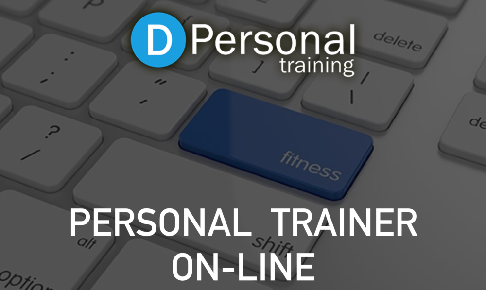 PERSONA TRAINER ON-LINE